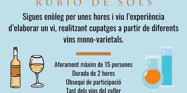 Experiències RUBIÓ de SÒLS - Enòlegs per un dia